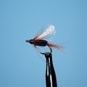 Pass Lake Wet Fly