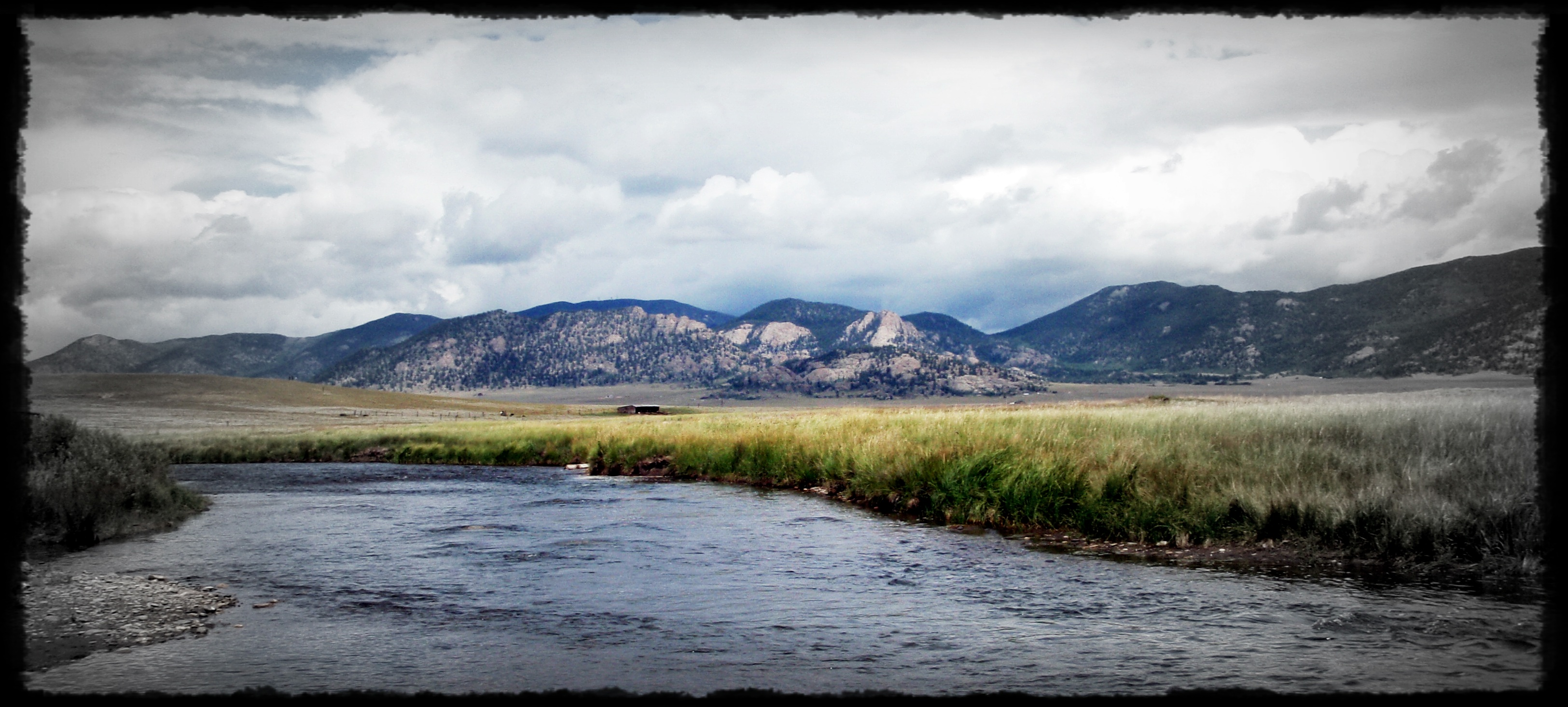 Dream stream a brautigan inspired piece casting around for South platte fishing report