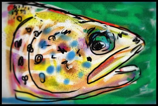 trout_no_2