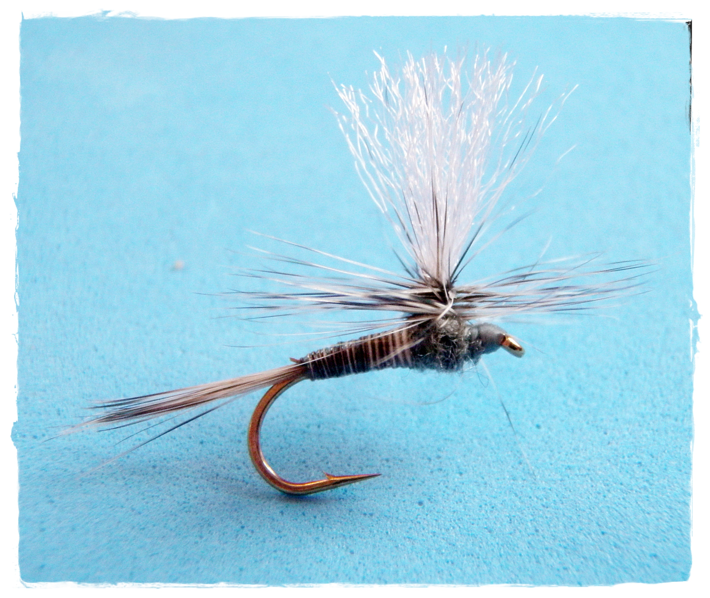 Grizzly Quill Paradun