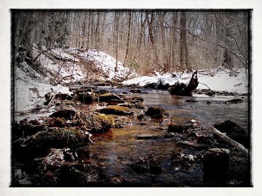 Nice little stream