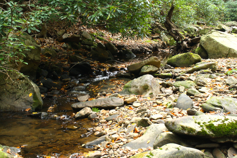 streampic1