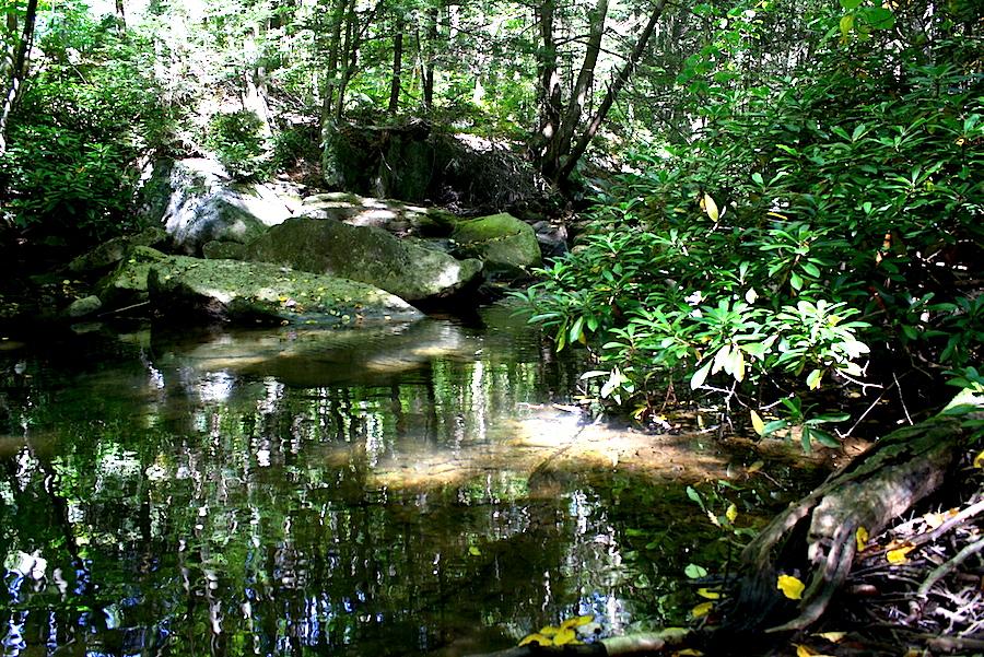 streampic4