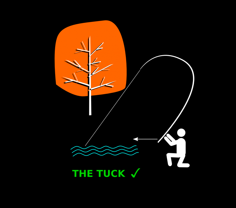FIg 6 The Tuck