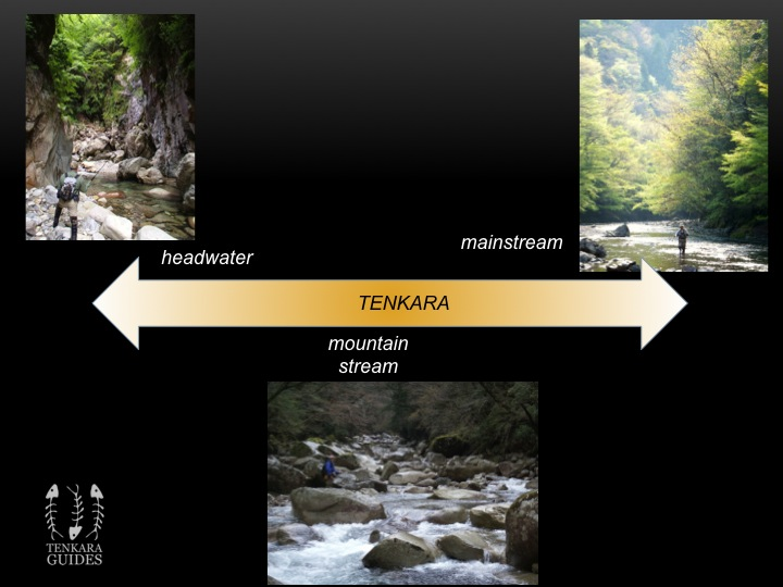 Fig 2 The Spectrum of Tenkara
