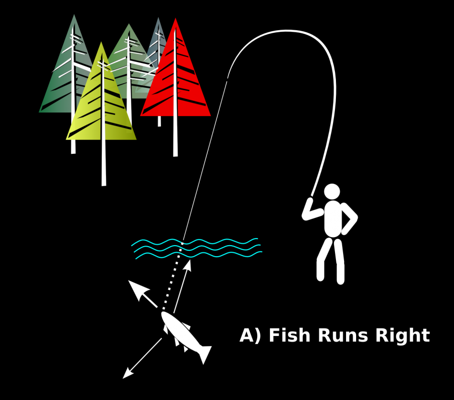 Fig 7 Fish Runs Right