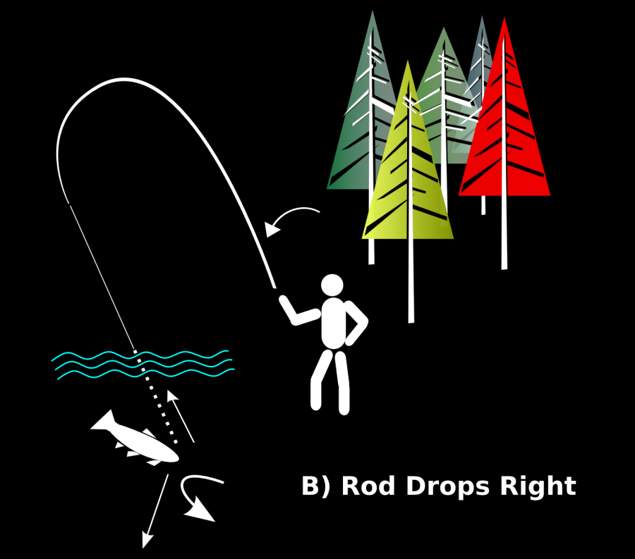 Fig 8 Rod Drops Right