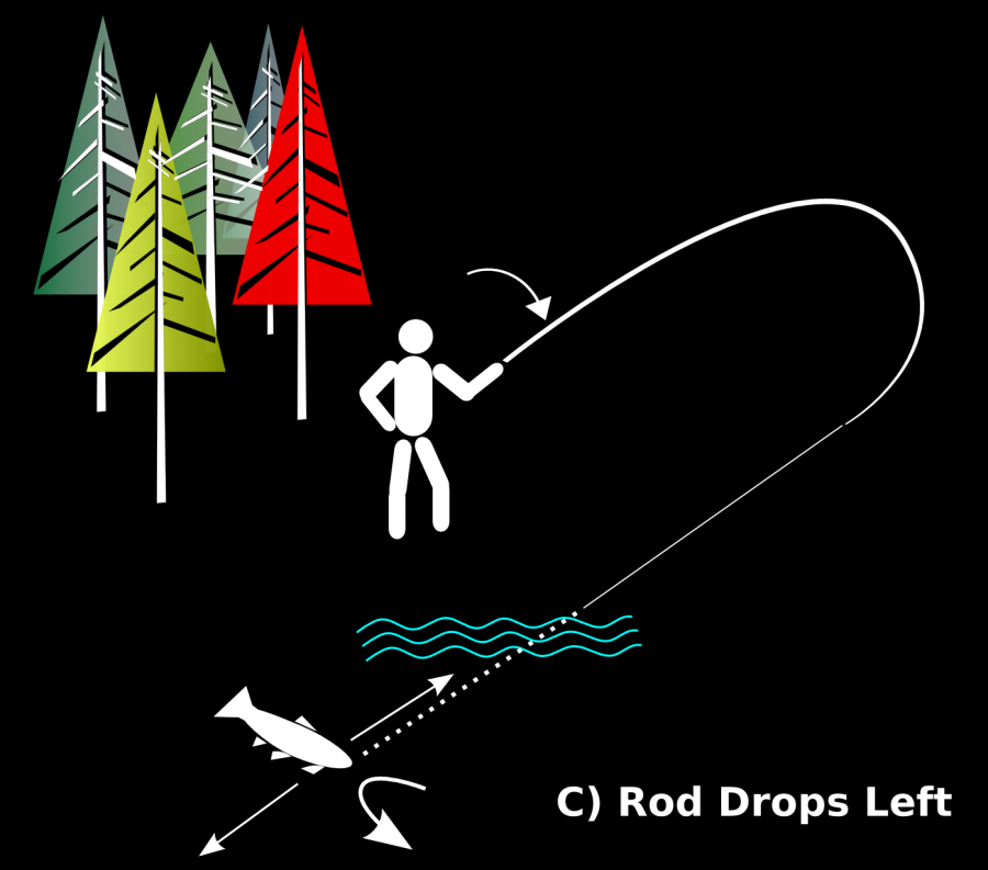 Fig 9 Rod Drops Left